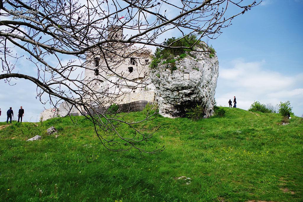 Rowerowy Szlak Orlich Gniazd. Zamek w Mirowie