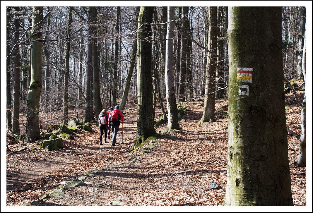 Ślęża-szlaki-żółty-czerwony