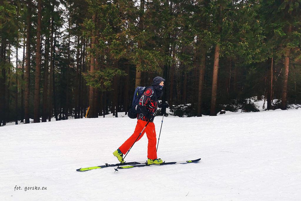 Łabski-szczyt-Szrenica-narty-skiturowe-podejście-nartostradą-puchatek