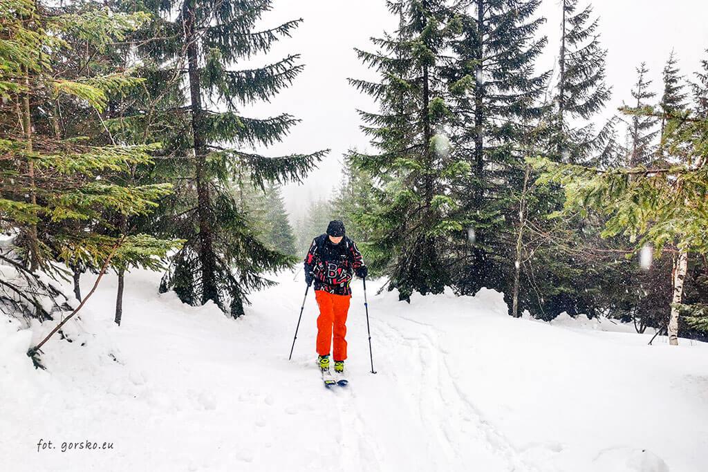 Łabski-szczyt-Szrenica-narty-skiturowe-w-stronę-Łabskiego