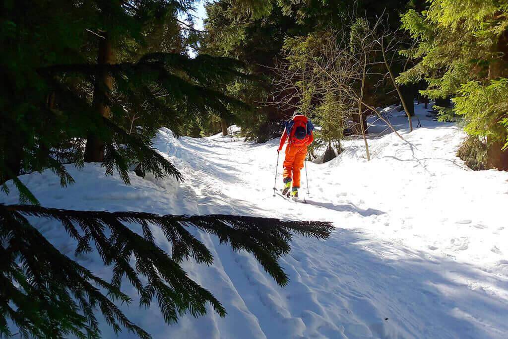 Łabski-szczyt-Szrenica-narty-skiturowe-żółty-szlak